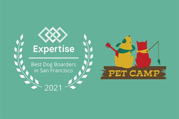 2021 Best Dog Boarder in San Francisco